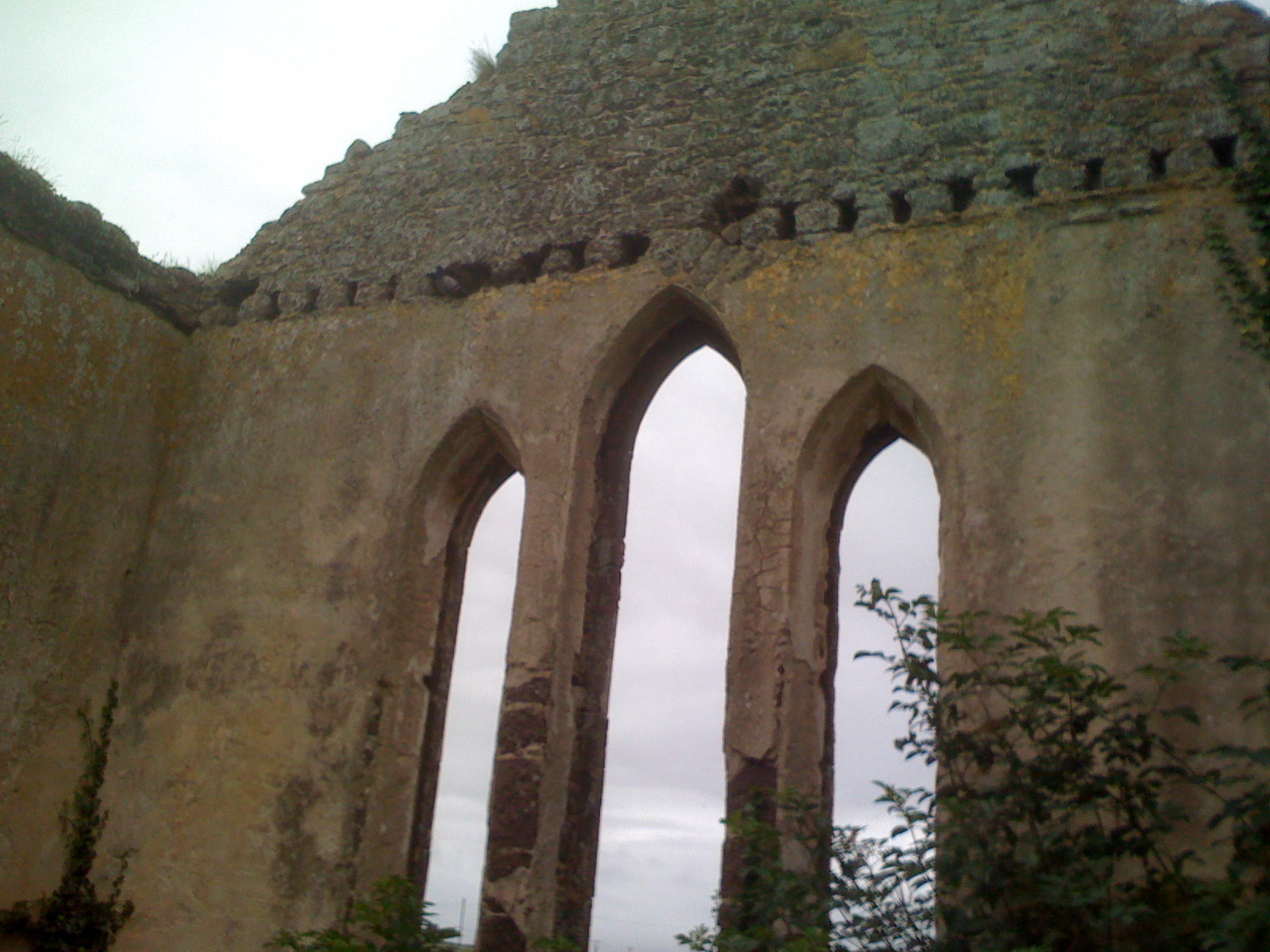 "Ruins of the ""French Church"" in Waterford, Ireland."
