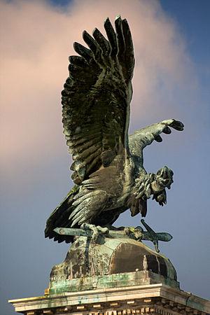 A turul bird in Budapest.